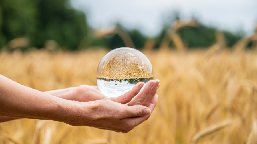 Female hands holding a crystal sphere over a wheat field with field and sky reflecting in the ball.